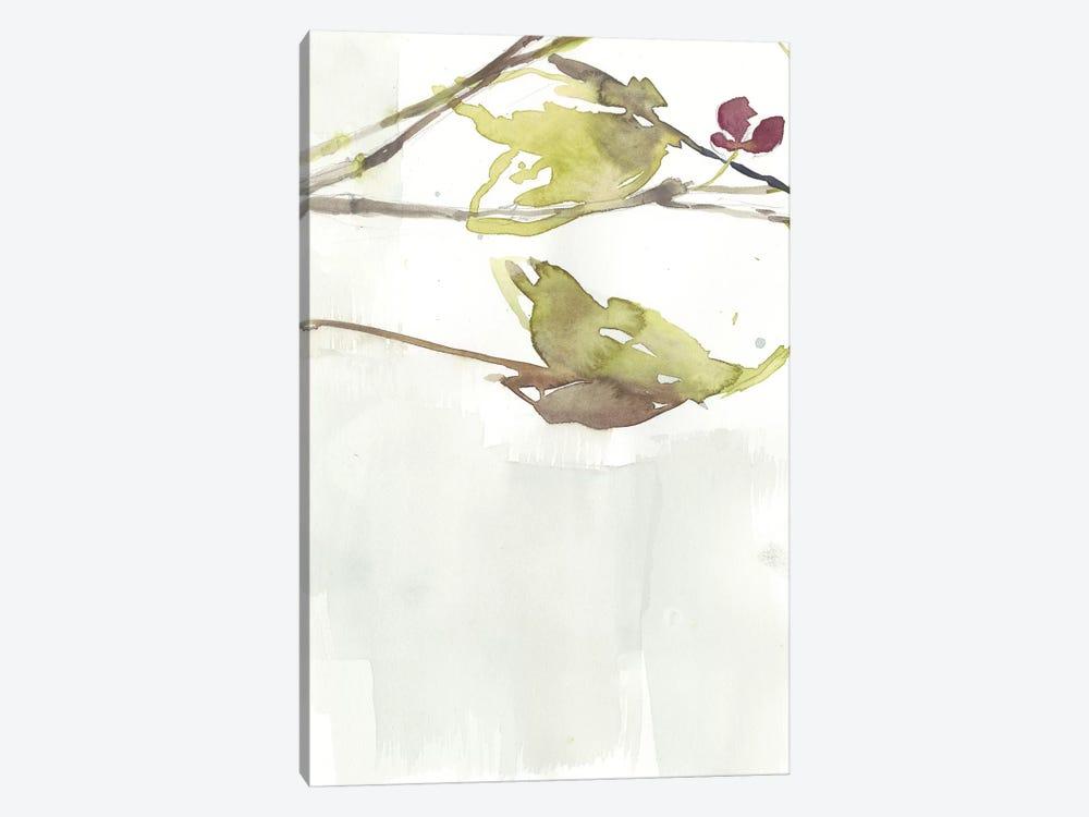 First Blooms V by Jennifer Goldberger 1-piece Canvas Wall Art