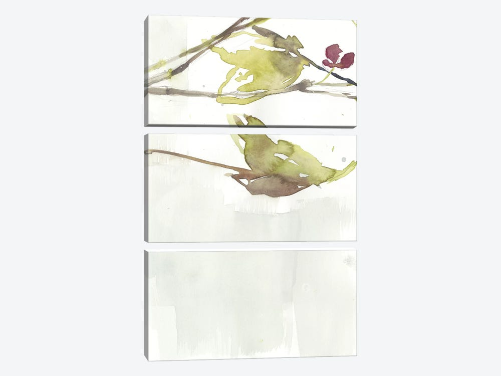 First Blooms V by Jennifer Goldberger 3-piece Canvas Wall Art
