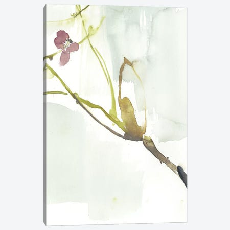 First Blooms VI Canvas Print #JGO826} by Jennifer Goldberger Canvas Wall Art