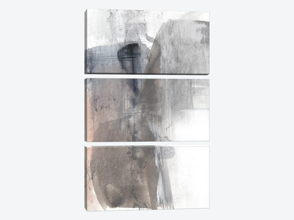 Sepia Blush II by Jennifer Goldberger 3-piece Canvas Art