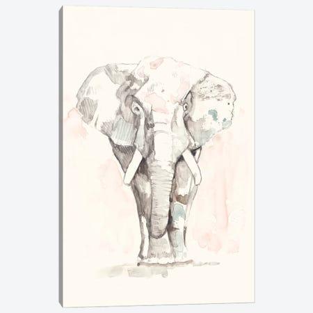 Pastel Safari II Canvas Print #JGO922} by Jennifer Goldberger Canvas Wall Art