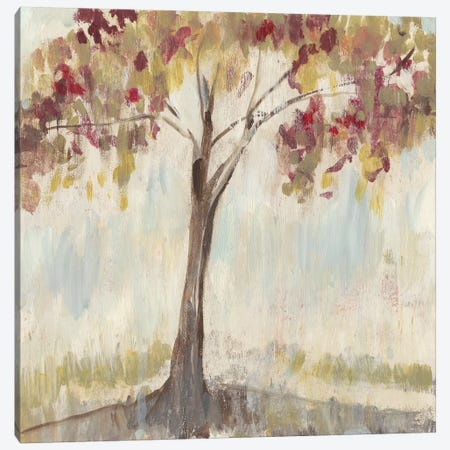 First of Fall II Canvas Print #JGO935} by Jennifer Goldberger Canvas Wall Art