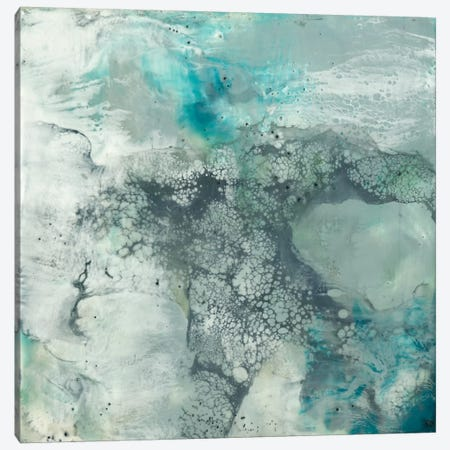 Sea Lace I Canvas Print #JGO94} by Jennifer Goldberger Canvas Art