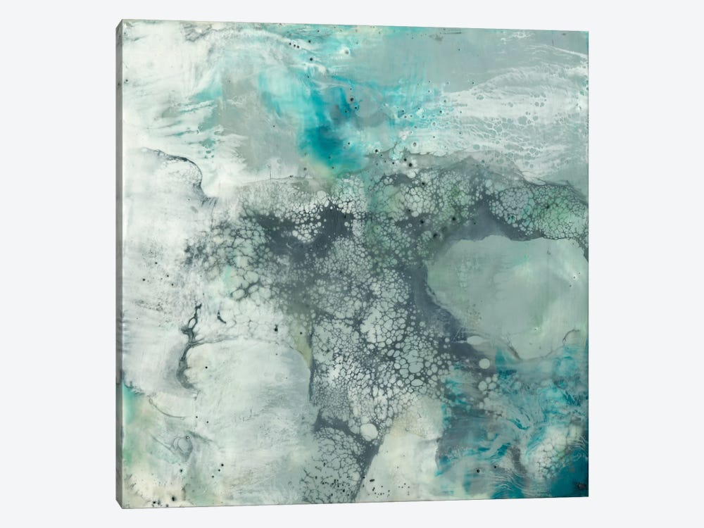 Sea Lace I by Jennifer Goldberger 1-piece Canvas Wall Art