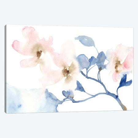 Cherry Blossom Light I Canvas Print #JGO952} by Jennifer Goldberger Canvas Print
