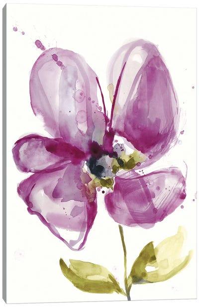 Violet Petals II Canvas Art Print