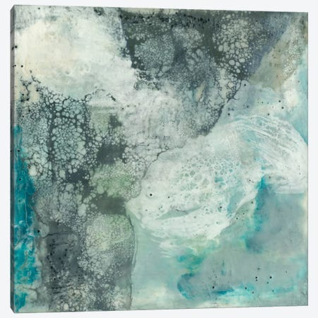 Sea Lace II Canvas Print #JGO95} by Jennifer Goldberger Canvas Wall Art