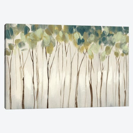 Viridian Treeline I Canvas Print #JGO978} by Jennifer Goldberger Art Print