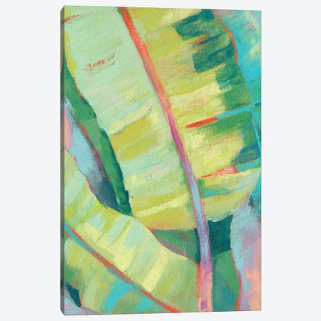 Vibrant Palm Leaves I Canvas Print #JGO980} by Jennifer Goldberger Canvas Wall Art