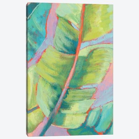 Vibrant Palm Leaves II Canvas Print #JGO981} by Jennifer Goldberger Canvas Artwork