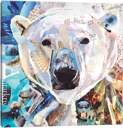 Polar Bear Canvas Print #JGR13
