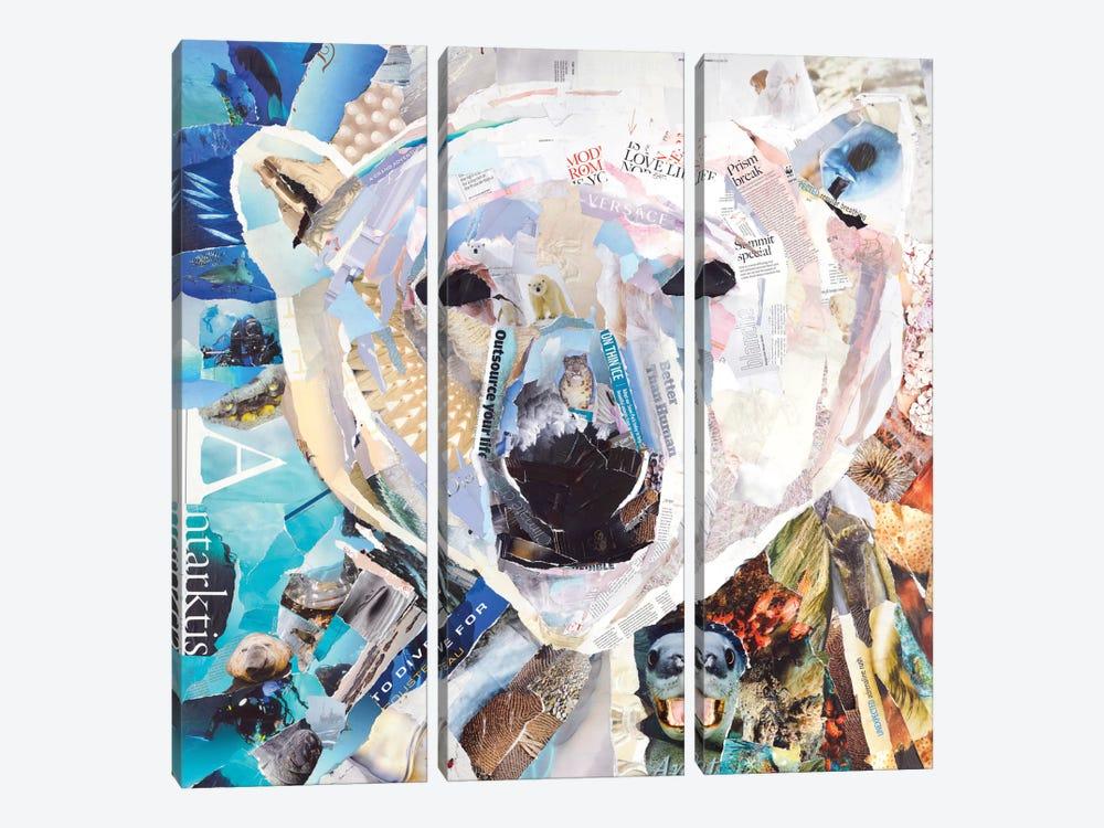Polar Bear by James Grey 3-piece Art Print