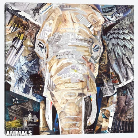 Elephant's Gaze Canvas Print #JGR5} by James Grey Canvas Wall Art