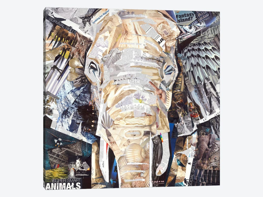 Elephant's Gaze by James Grey 1-piece Canvas Artwork