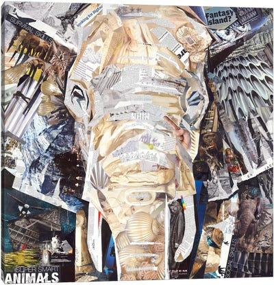 Elephant's Gaze Canvas Art Print