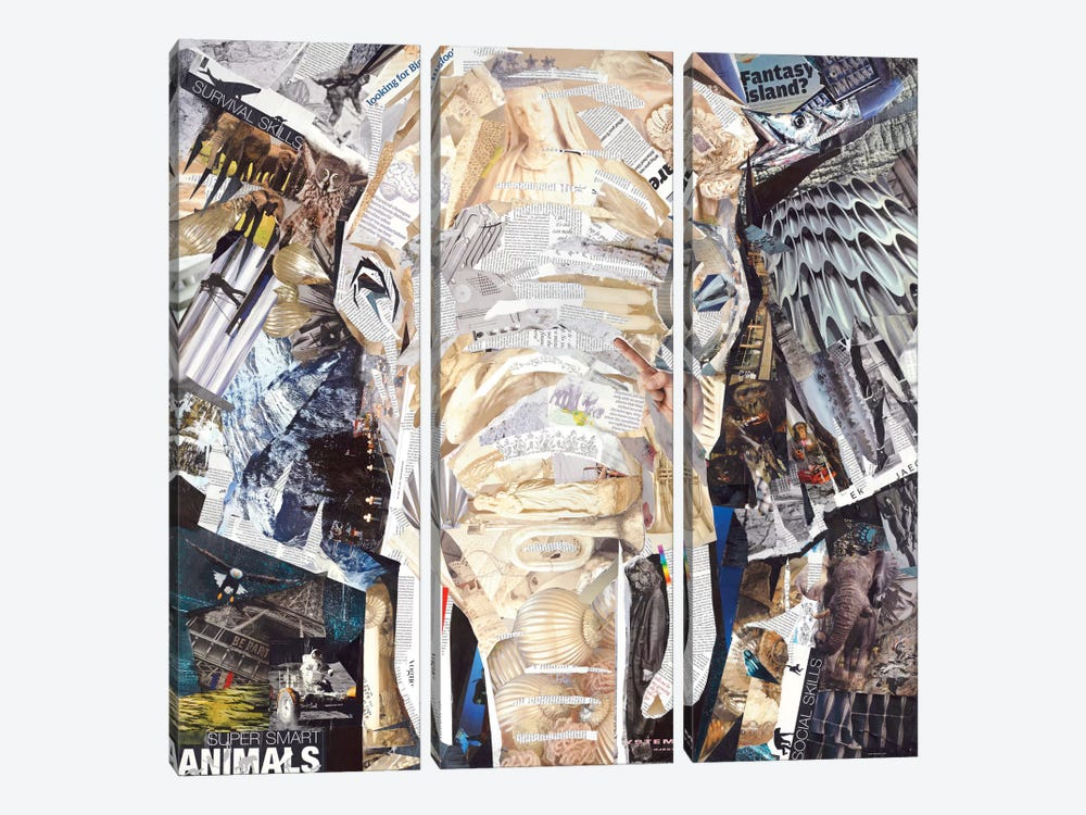 Elephant's Gaze by James Grey 3-piece Canvas Art