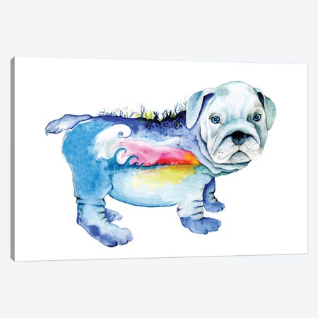 Dog Canvas Print #JHB12} by Joanna Haber Canvas Art