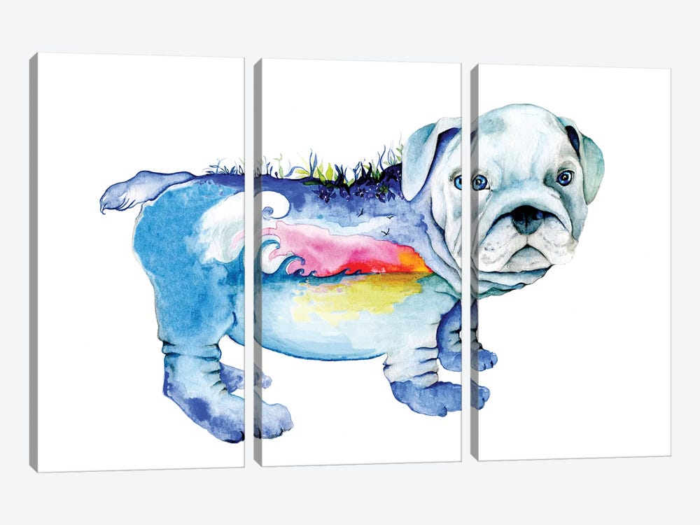 Dog by Joanna Haber 3-piece Canvas Artwork