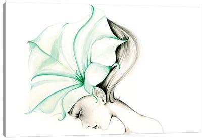 Ephemeral Canvas Art Print