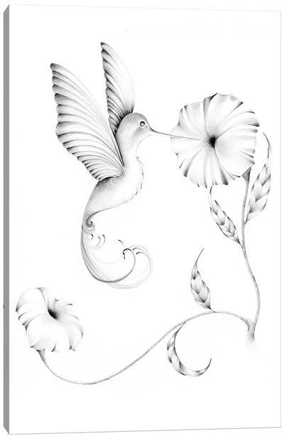Hummingbird I Canvas Art Print