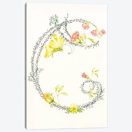 Letter C Canvas Print #JHB32} by Joanna Haber Canvas Artwork