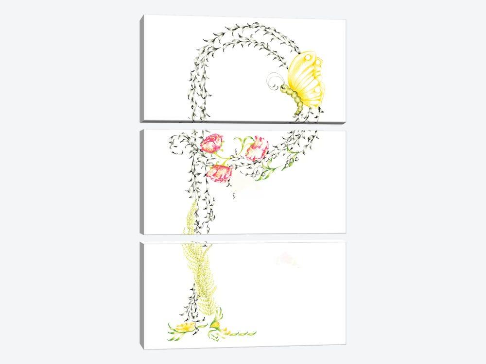 Letter P by Joanna Haber 3-piece Canvas Art Print