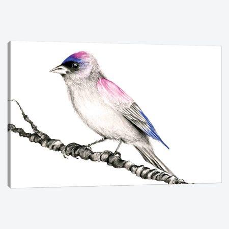 Purple Bird Canvas Print #JHB50} by Joanna Haber Canvas Wall Art