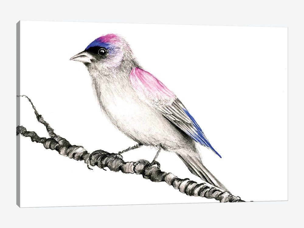 Purple Bird by Joanna Haber 1-piece Canvas Art