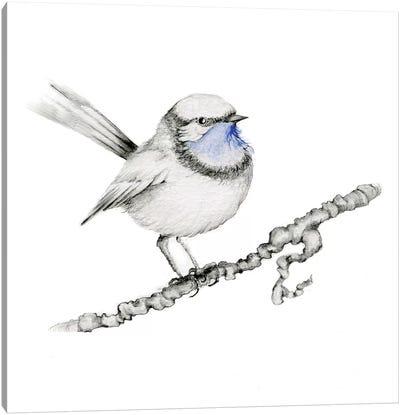 Royal Blue Bird Canvas Art Print