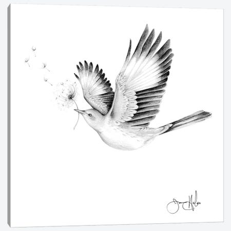 Spread Your Wings And Watch Your Wishes Come True Canvas Print #JHB57} by Joanna Haber Art Print