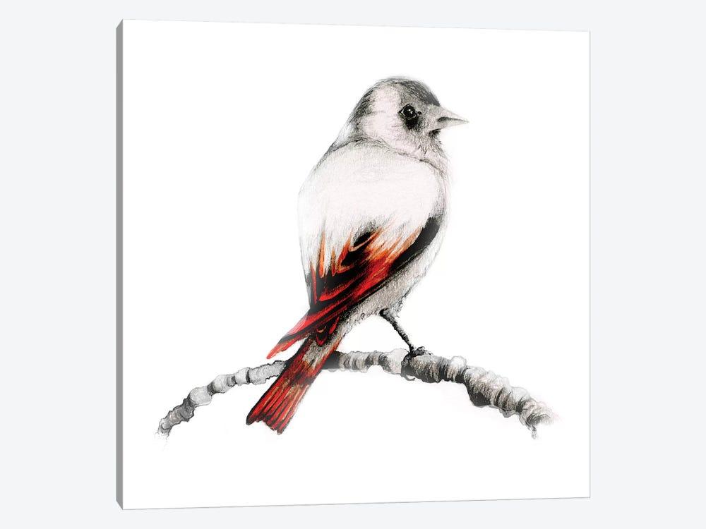 Brown Bird by Joanna Haber 1-piece Canvas Art Print