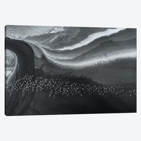 Dream Land Canvas Print #JHF15} by John Fan Art Print