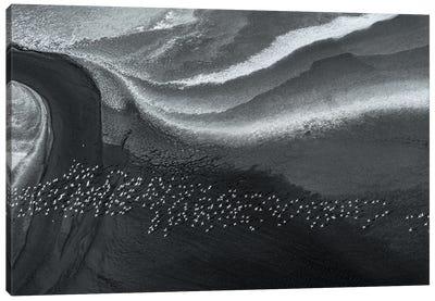 Dream Land Canvas Art Print