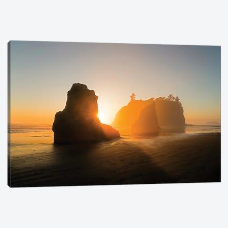 The Golden Beach Canvas Print #JHF20} by John Fan Canvas Art Print