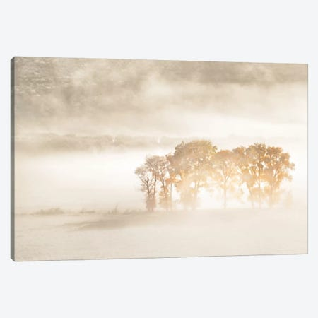 Autumn Dreams Canvas Print #JHF5} by John Fan Canvas Artwork