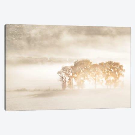 Autumn Dreams Canvas Print #JHF5} by John Fan Canvas Artwork