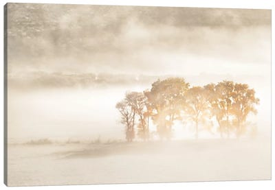 Autumn Dreams Canvas Art Print