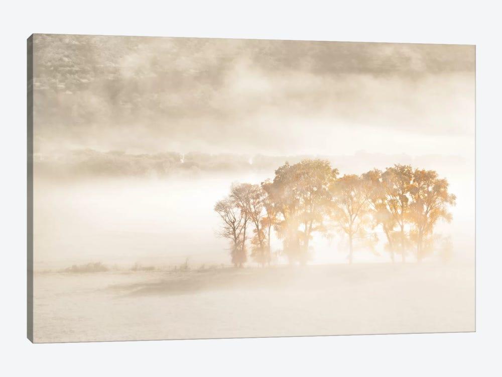Autumn Dreams by John Fan 1-piece Canvas Wall Art