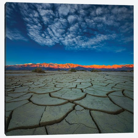 Dry Season Canvas Print #JHF7} by John Fan Canvas Art
