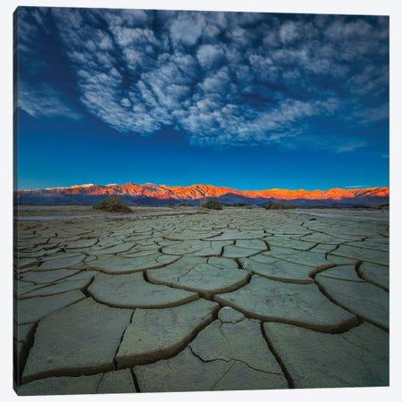 Dry Season Canvas Print #JHF7} by John Fan Canvas Art