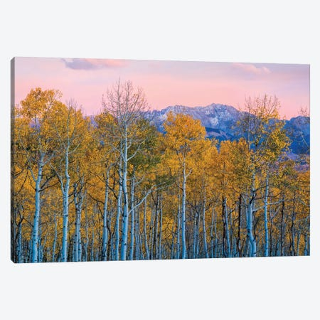 Autumn Delight Canvas Print #JHF9} by John Fan Canvas Print