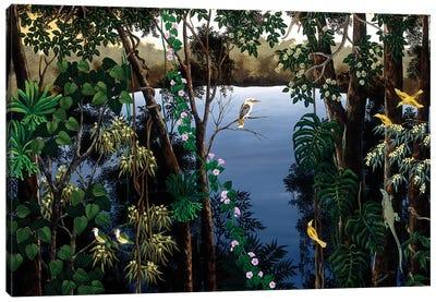 Kookaburra At The Lake Canvas Art Print