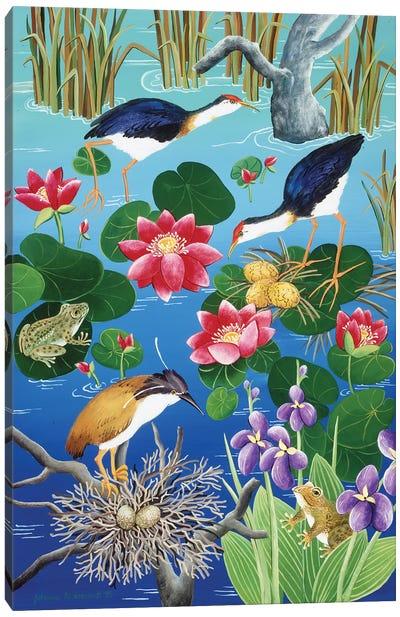 Nesting Waterfowl Canvas Art Print