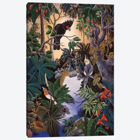 Palm Cockatoo Canvas Print #JHL15} by Johanna Hildebrandt Canvas Art Print