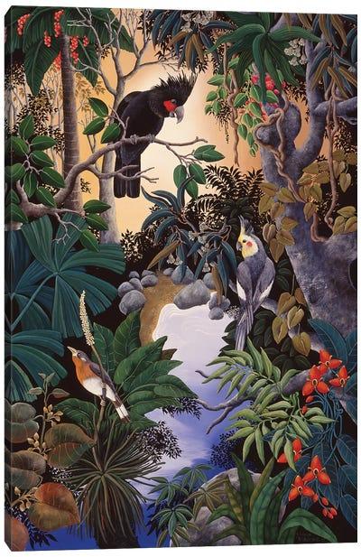 Palm Cockatoo Canvas Art Print
