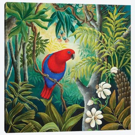 Parrot At Daybreak Canvas Print #JHL16} by Johanna Hildebrandt Canvas Art Print