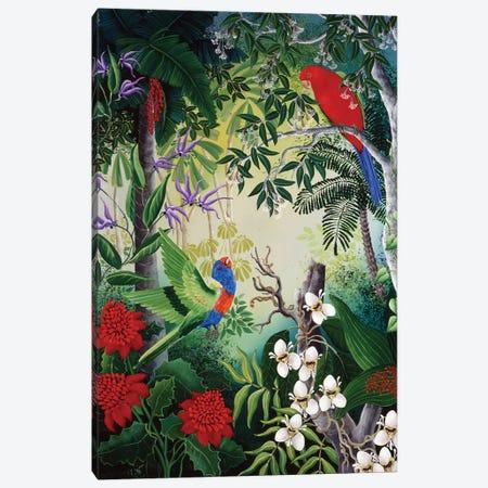 Parrots And Blooms Canvas Print #JHL17} by Johanna Hildebrandt Canvas Print