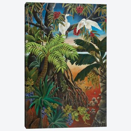 Mangrove Country Canvas Print #JHL31} by Johanna Hildebrandt Canvas Wall Art