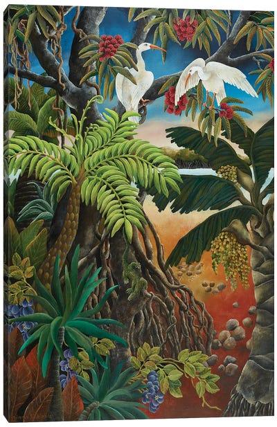 Mangrove Country Canvas Art Print
