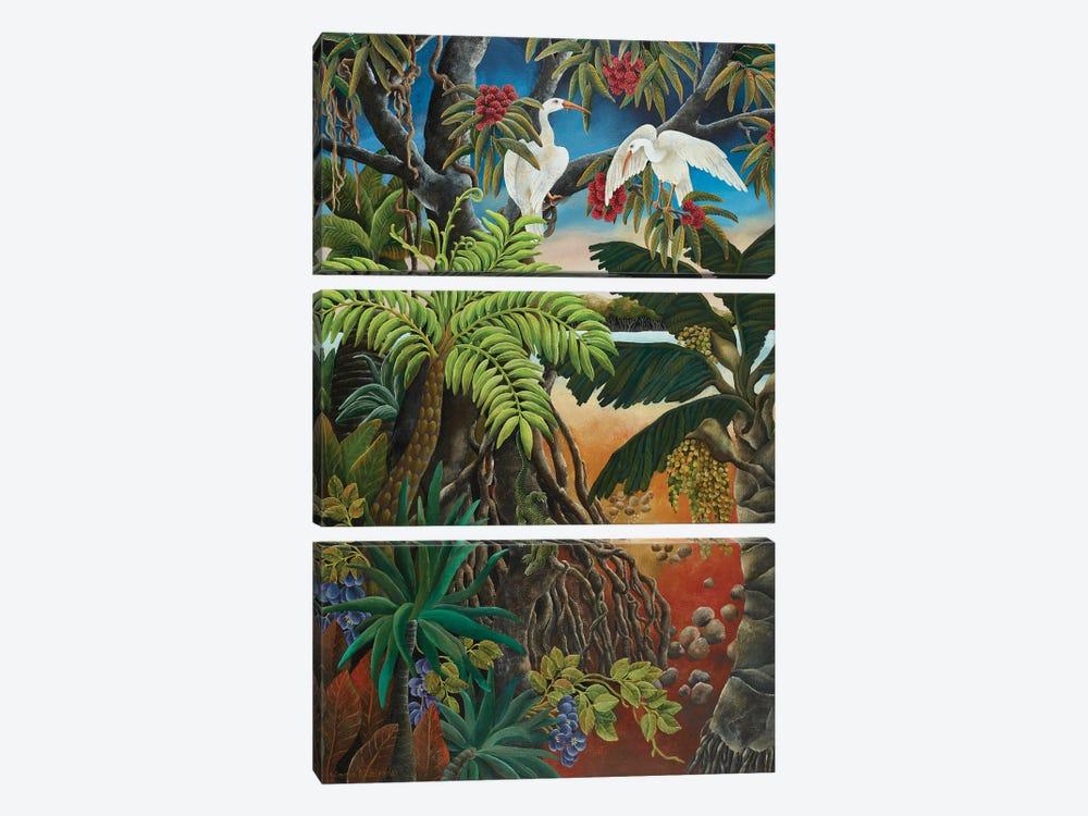 Mangrove Country by Johanna Hildebrandt 3-piece Canvas Artwork